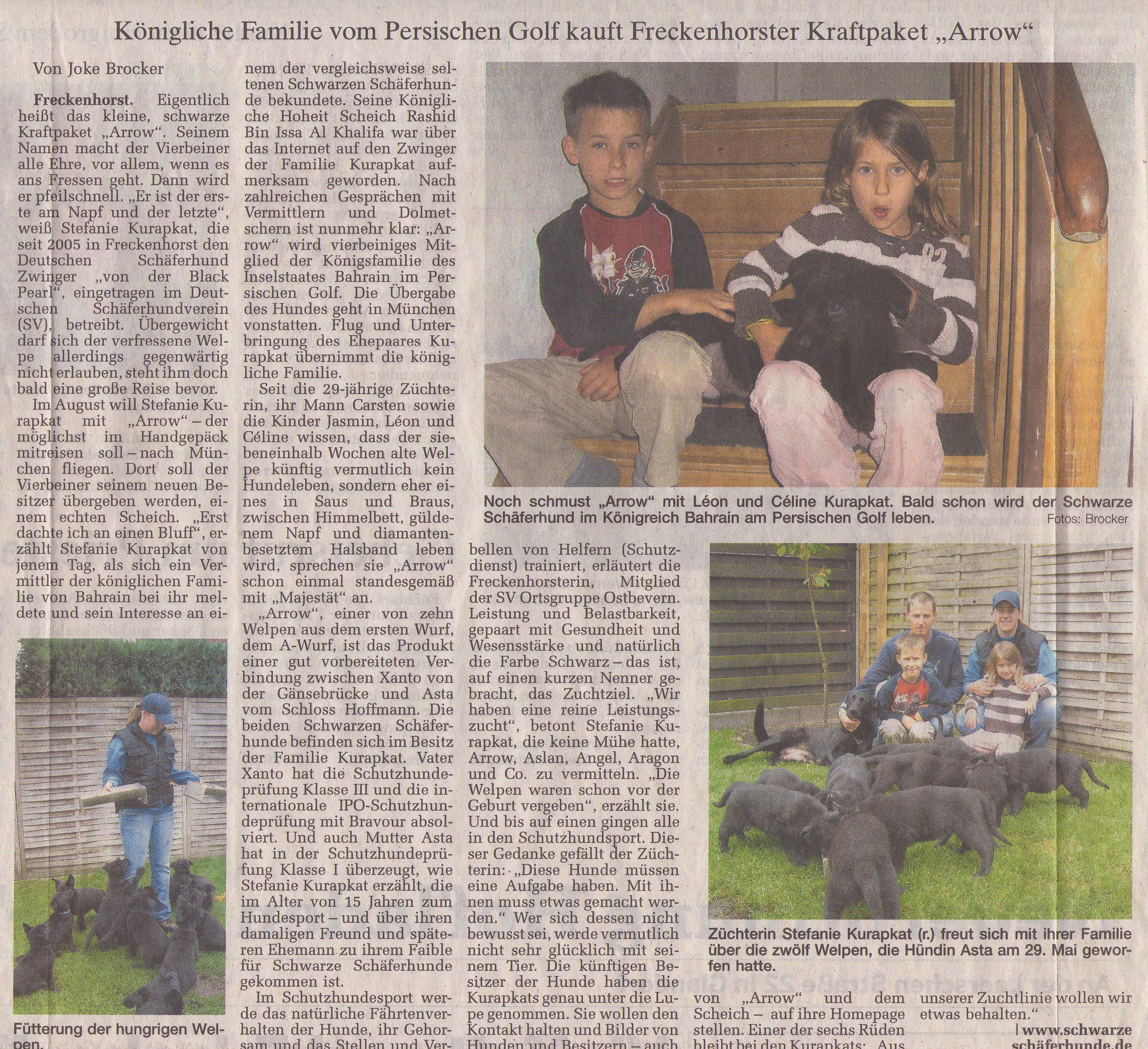 Zeitung-Scheich1